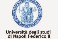 Università, ospedali, welfare, trasporti, teatri: i tanti primati di Napoli e del Meridione prima dell'Unità d'Italia