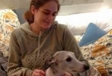 PRIMA CATERINA, POI PEPPA PIG: IL DELIRIO DEGLI ANIMALISTI