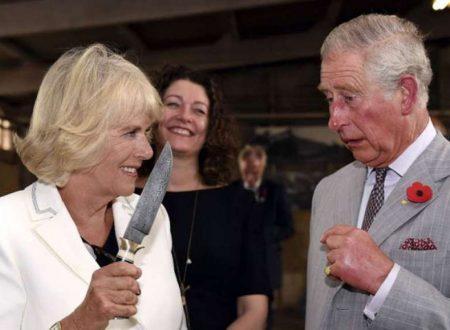Morte Lady Diana causata da figlio segreto di Carlo e Camilla: la nuova rivelazione