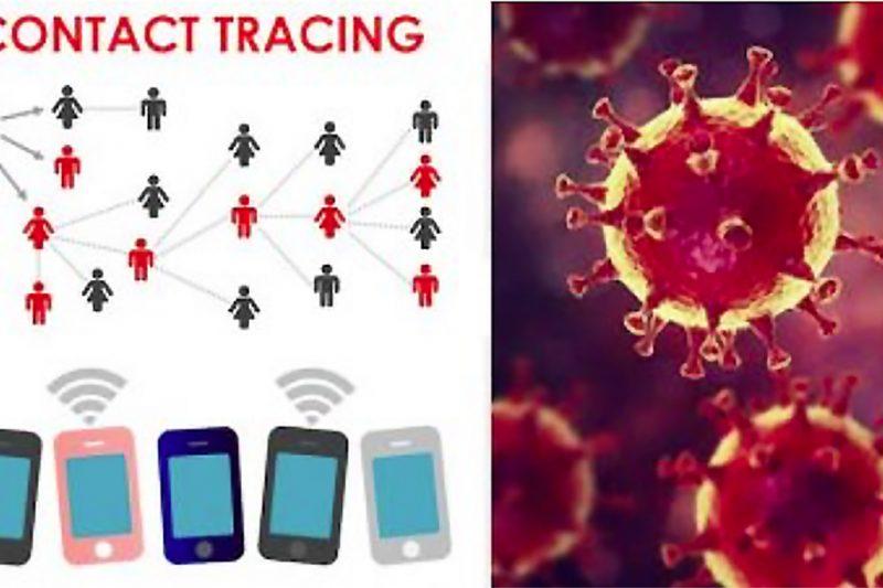 Immuni app: come funziona, se serve, rischi e chi c'è dietro