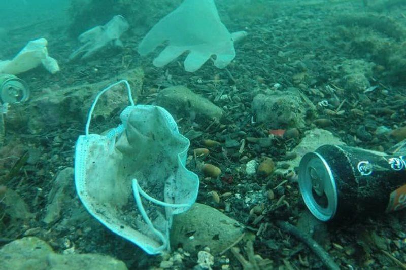 Mascherine nuovo pericolo per il mare: rischiano di superare le meduse