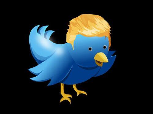 Trump, il Presidente biondo che fa impazzire i Social (e il Mondo)