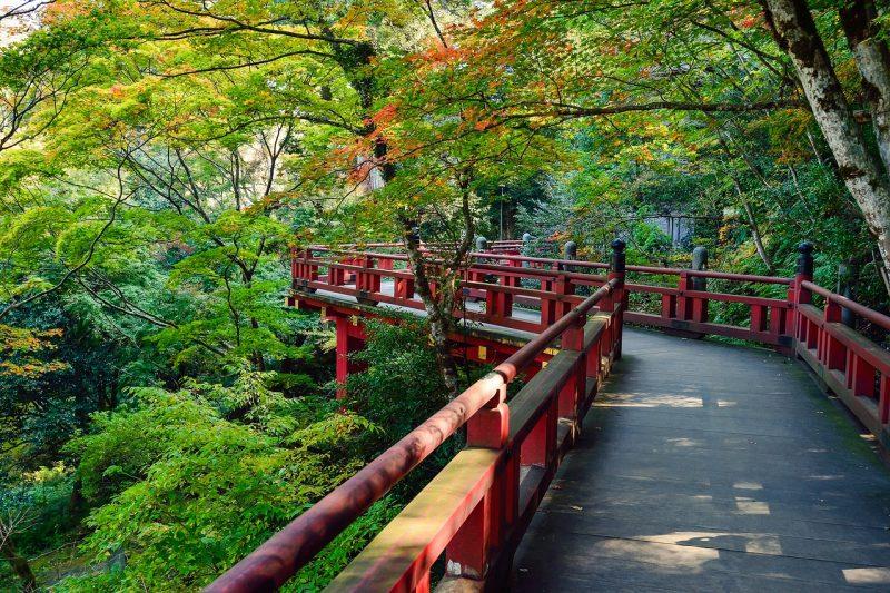 Giappone, il Sol non più Levante: tra crisi economica e istituzionale