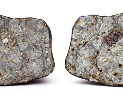 Frammenti di meteorite caduto in Molise valgono milioni di euro: dove trovarli